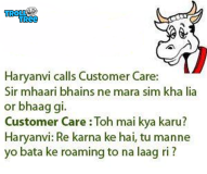 Haryanvi calls Customer Care