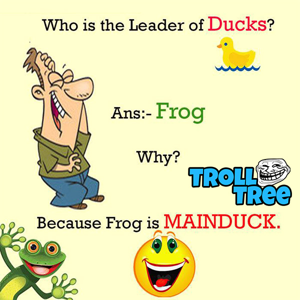 Who is the leader of ducks ? Funny Questions